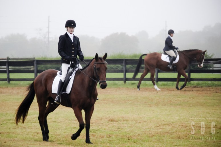 middle tennessee pony club horse trials 2014