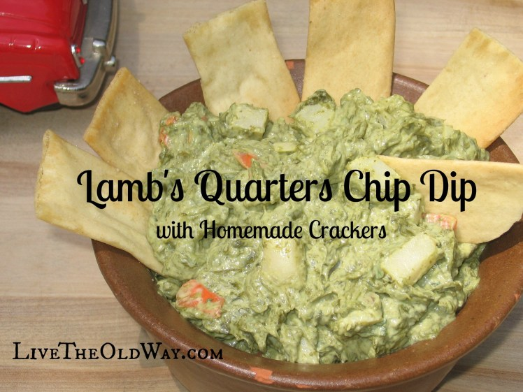 Lamb's Quarters Chip Dip with Homemade Crackers