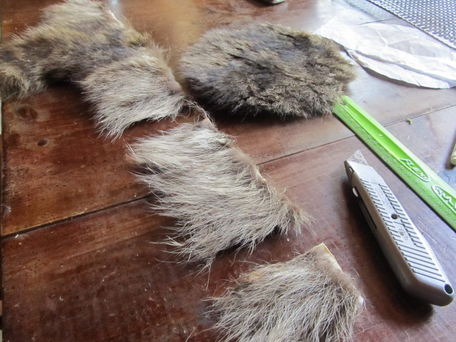 Coon skin cap pattern how to cut out a coon skin cap