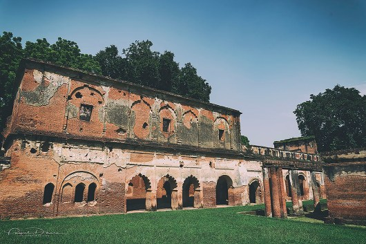 DSC_6634_Lucknow