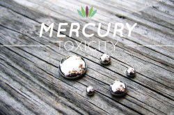 Image results for Mercury Toxicity