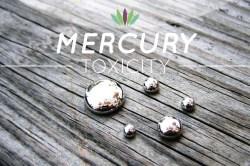 Afbeelding resultaten voor Mercury toxiciteit