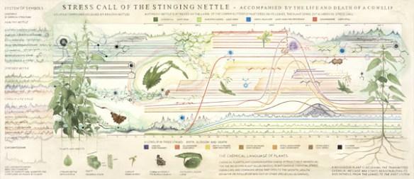 En bild som försöker illustrera en typ av dolda energier och kommunikation mellan växter.
