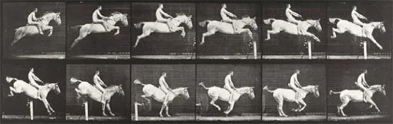 Bildserie av fotografen Eadweard Muybridge.