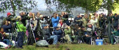 Fotografi som visar en massa människor som ägnar sig åt fågelskådning.