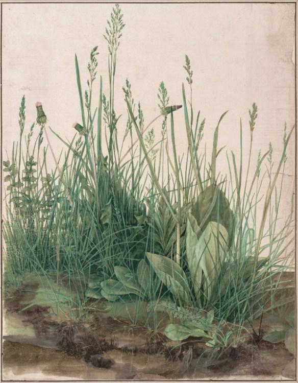 En målning som avbildar en mängd gröna växter mot en ljus bakgrund. Man ser olika typer av blad och strån. I förgrunden är jorden genomlyst så att vissa av växternas rötter syns.