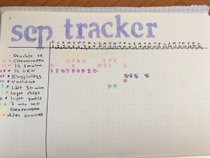 monthly tracker BuJo