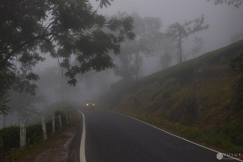 munnar-fog-2