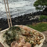 hawaii-pokeshack3-sml
