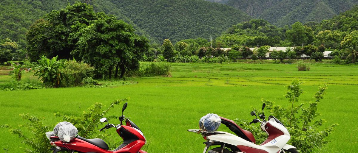 Permalink to: Mae Hong Son Loop – 800km motorbiking around Northern Thailand