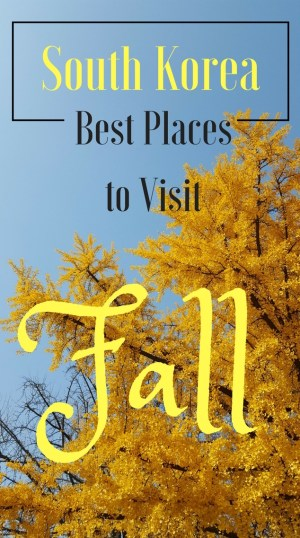 Best Places For Fall Colors in South Korea