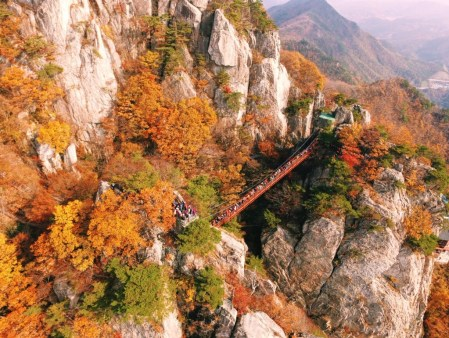 daedunsan-cloud-bridge-autumn-in-korea
