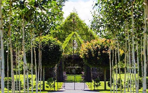 Un bărbat a petrecut patru ani pentru a construi o biserică din copaci. Rezultatul este magic