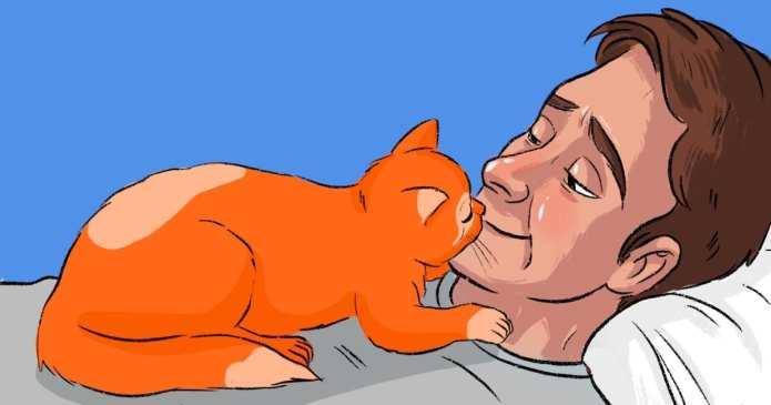 """13 Moduri în care Pisica ta îți spune """"Te iubesc"""""""