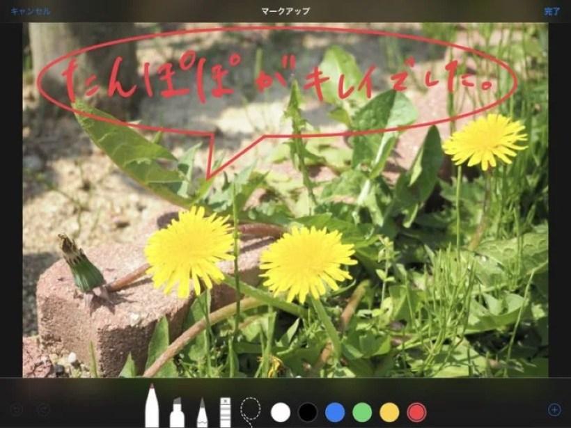 Apple Pencilで写真に書き込み