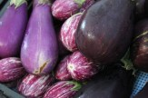 eggplant up close photo