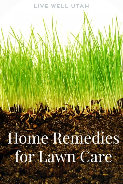 HOME REMEDIES for Lawn Care – Live Well Utah