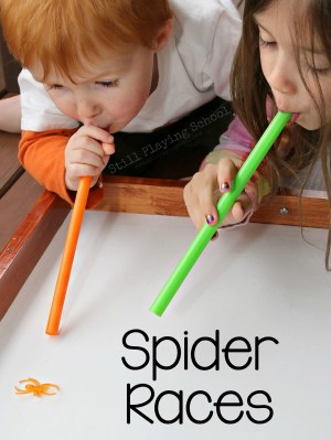 spider-races