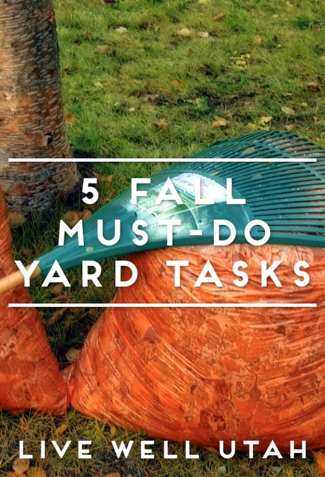fall-yard-tasks