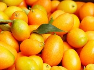 kumquats-357881_1920