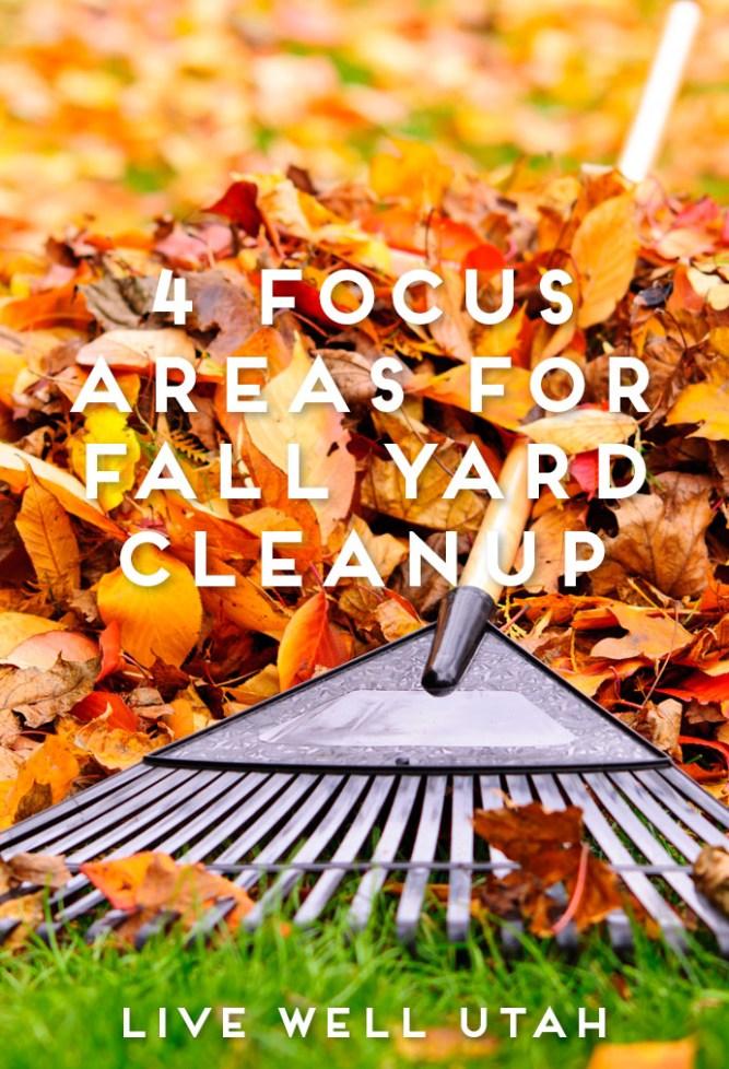 fall yard cleanup.jpg