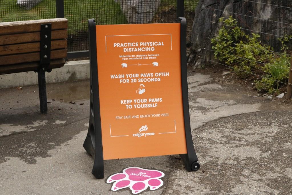 Calgary Zoo Reopens To Guests After Coronavirus Shutdown Livewire Calgary