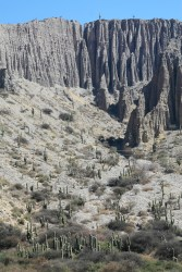 Roadtrip to Purmamarca - the scenery is stunning! Check out all the cacti