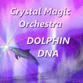 see and hear more: http://crystalmagicorchestra.com/dolphins