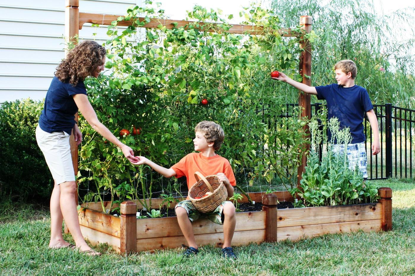 Diy How Make Raised Garden