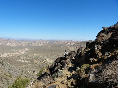 Climbing Ryan Mountain