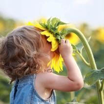 child and sunflower
