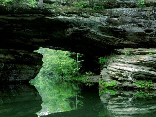green gentle river
