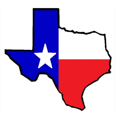 Living Blue In Texas' State Of The State – 2021
