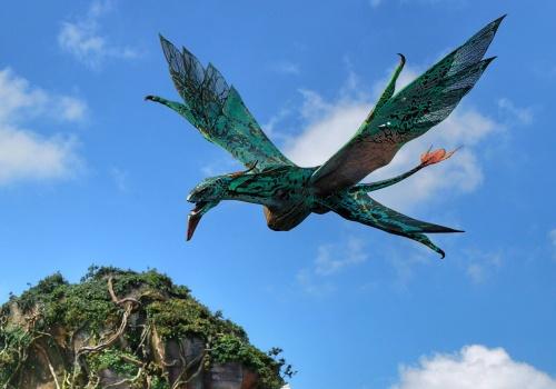 Pandora World of Avatar at Disney's Animal Kingdom Flight of Passage banshee
