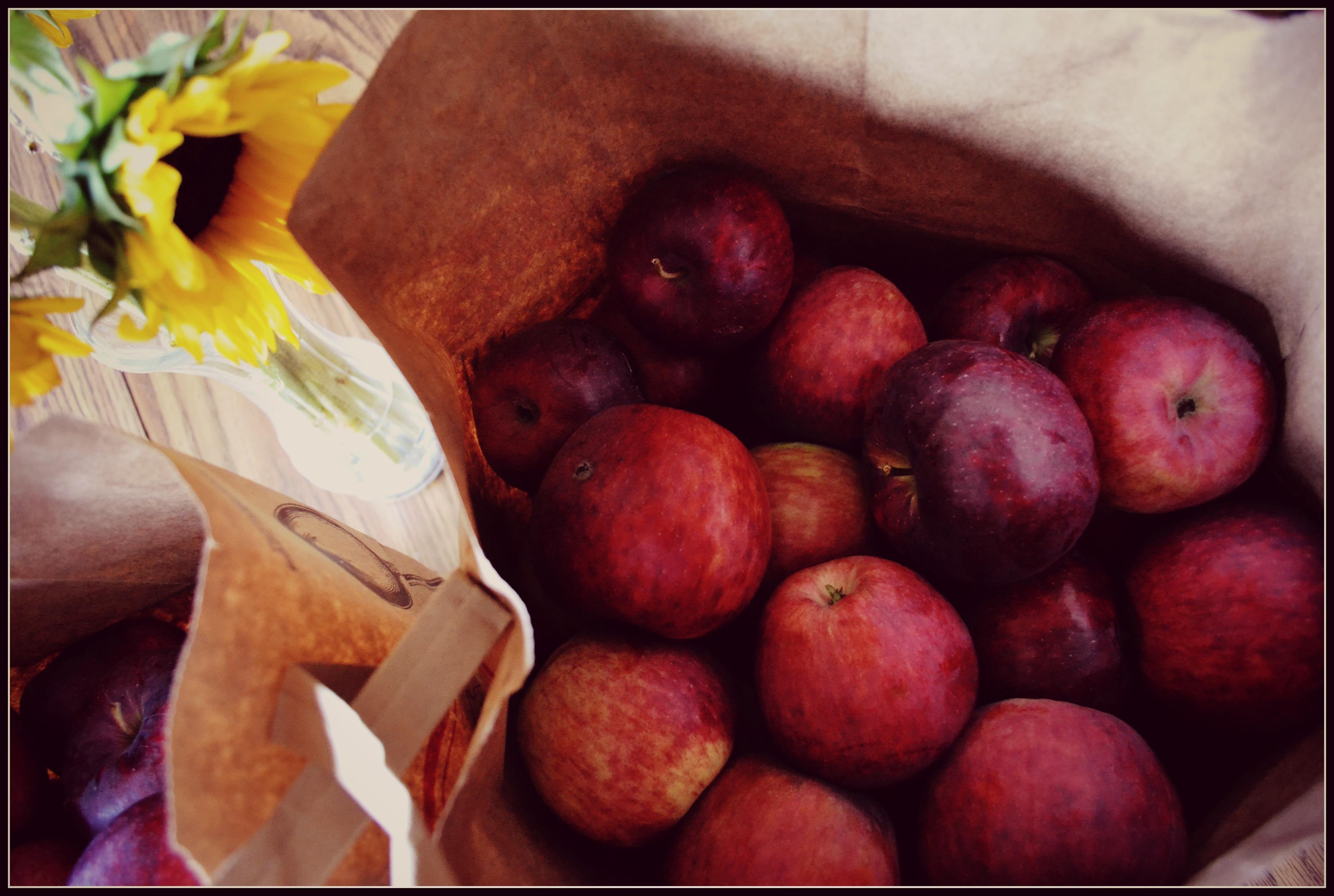 apples-border