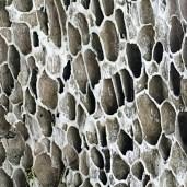 A coral pattern, Bintan Islan