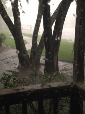 09012014_Rain