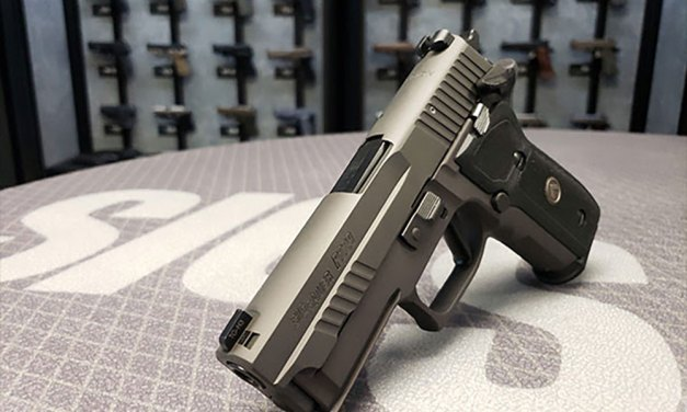SIG SAUER-Legion Series P229 SAO Pistol Review
