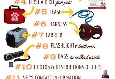 Pet Bug Out Bag Cheat Sheet