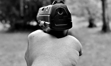 Marksmanship Training On A Budget