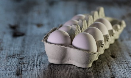 Egg Long Term Food Storage  Cheat Sheet