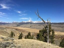 Dunoir Valley Dubois Wyoming