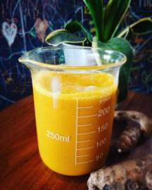 Jamu (Tangerine, Turmeric, Coconut Nectar)