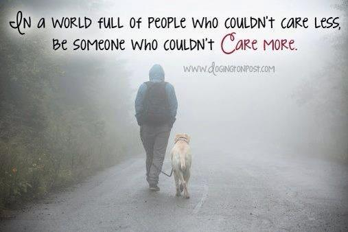 Living for a Cause the non profit where what you care about we care about.