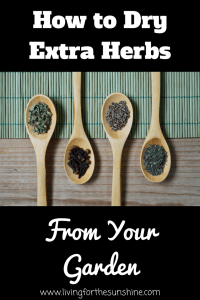 Drying Herbs from Your Garden