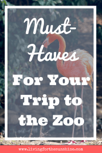 Zoo Must-Haves