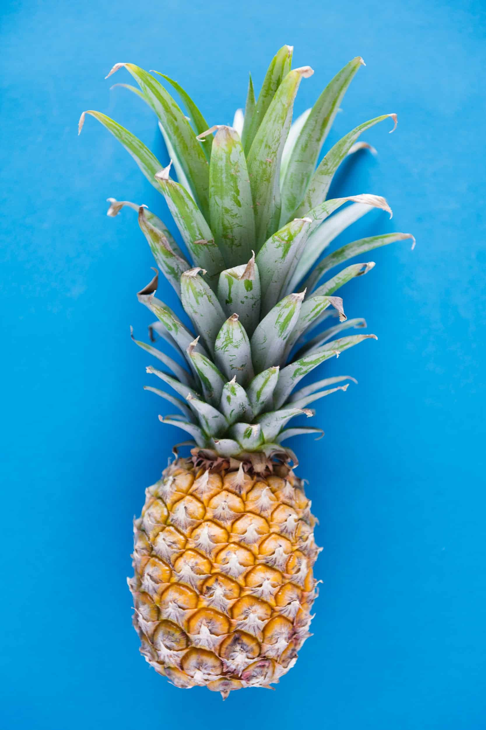 blue-background-delicious-flatlay-953217