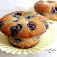 Paleo Blueberry Muffin (Grain Free, Gluten Free, Low Carb)