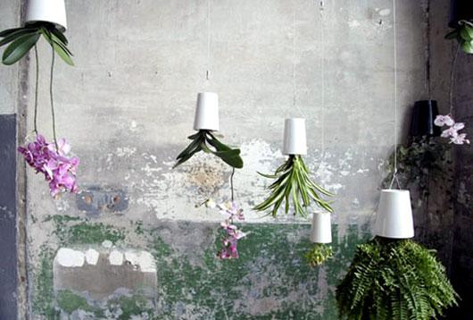 Gardening Ideas with Ceramic Pots