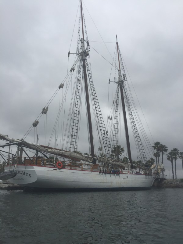 The Bill of Rights tall ship docked at the